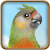 C oldparrot.png