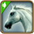 C horse6.png